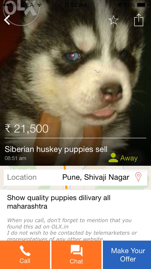 Fake dog add on olx - OLX IN Consumer Review - MouthShut com