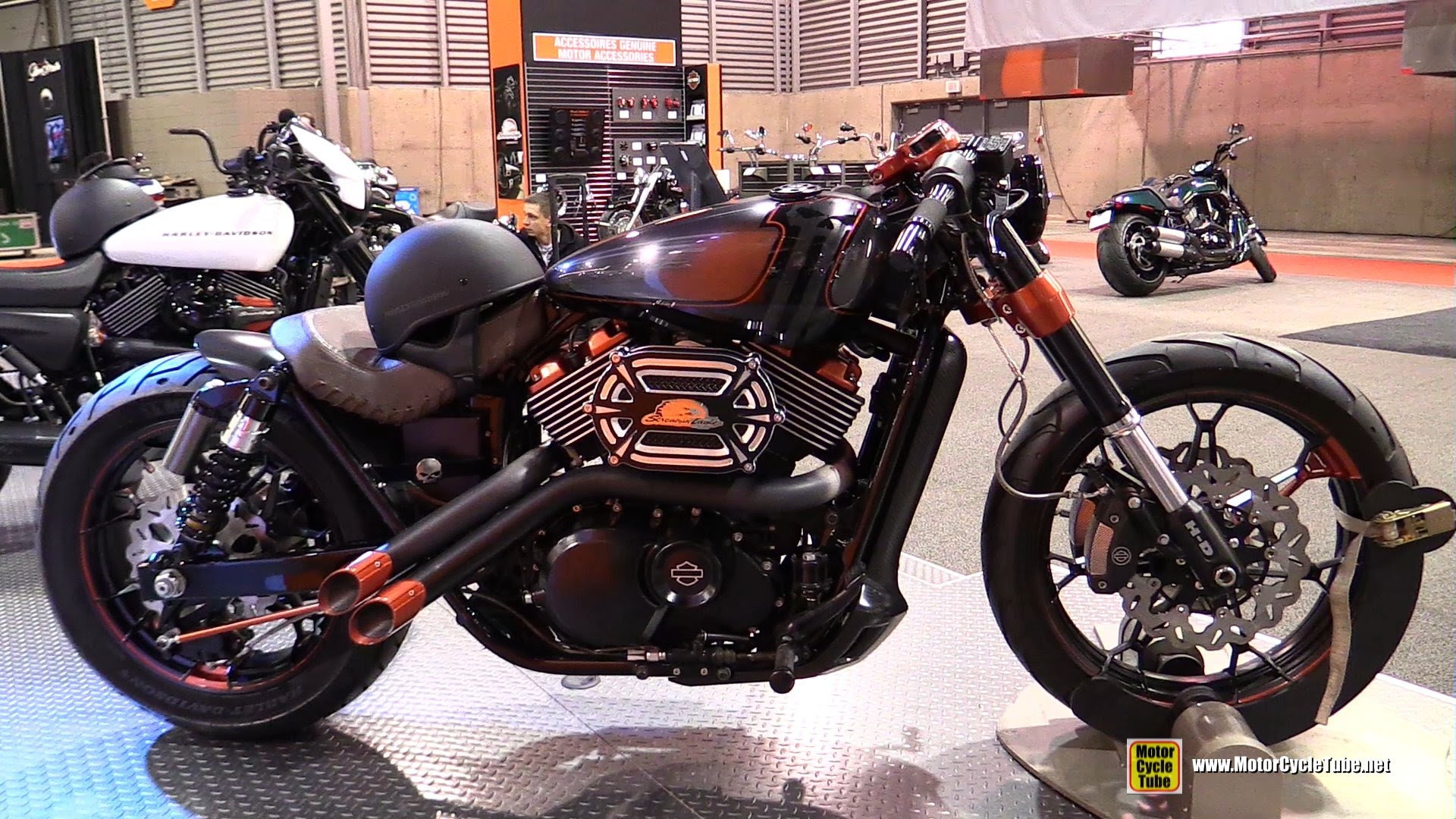 king lion among the lions - harley davidson street 750 consumer
