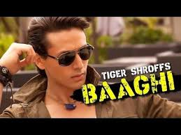 Baagi 2016 full hd movie 720psl - BAAGHI (2016) Audience Review