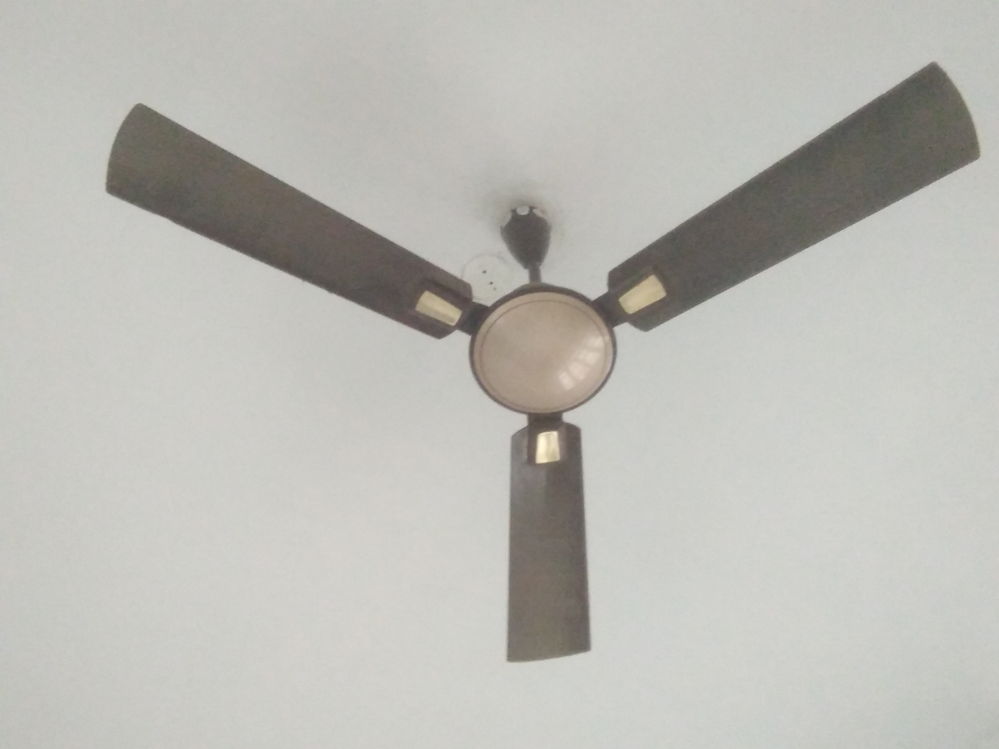Bajaj ceiling fans review bajaj ceiling fans price bajaj ceiling at the time of rotating there is a sound from fan which diaturb us to sleep now i repared it and using but now i am not much satisfied mozeypictures Choice Image