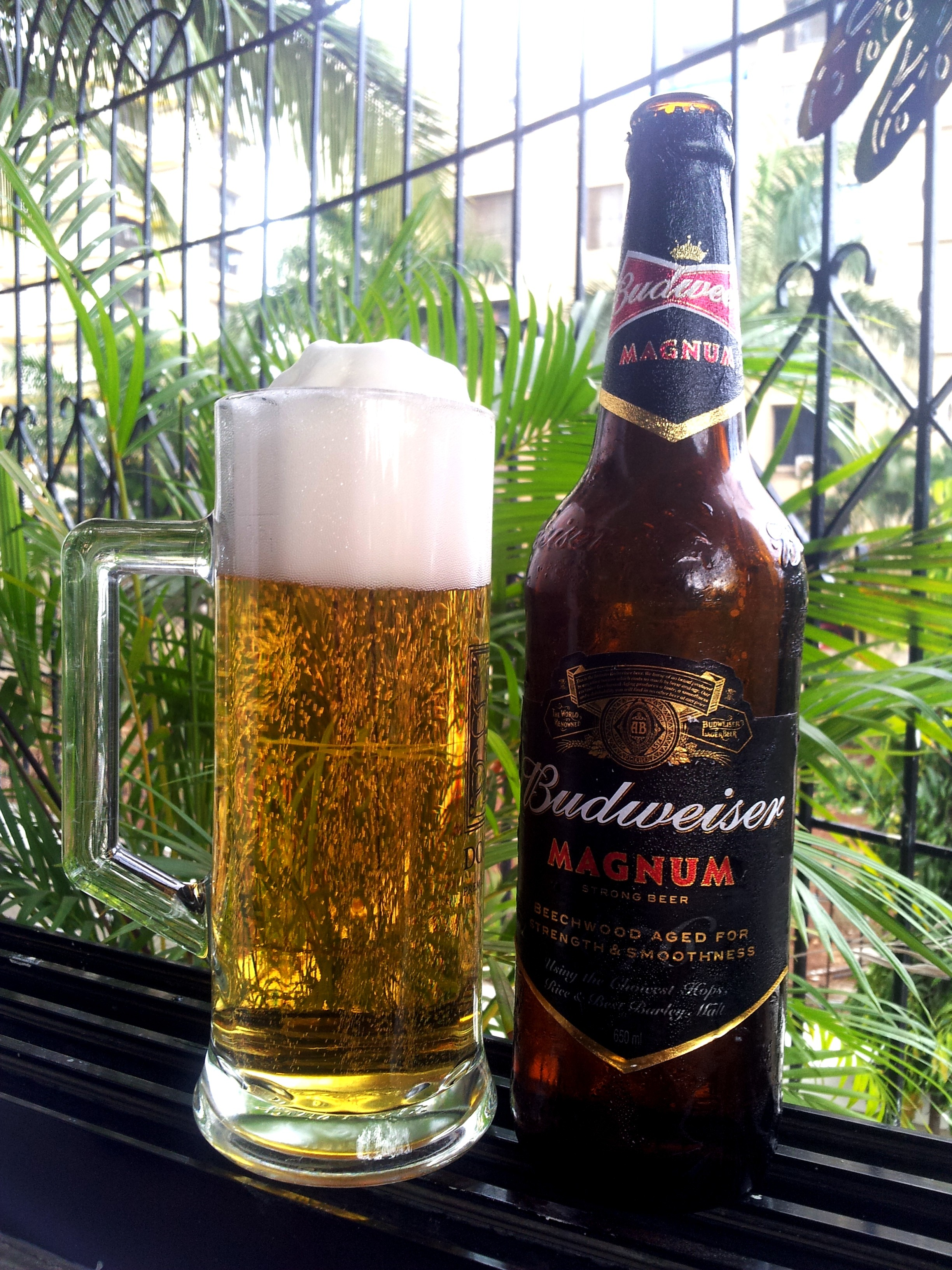 beer review budweiser magnum giggle water 411 - HD2448×3264