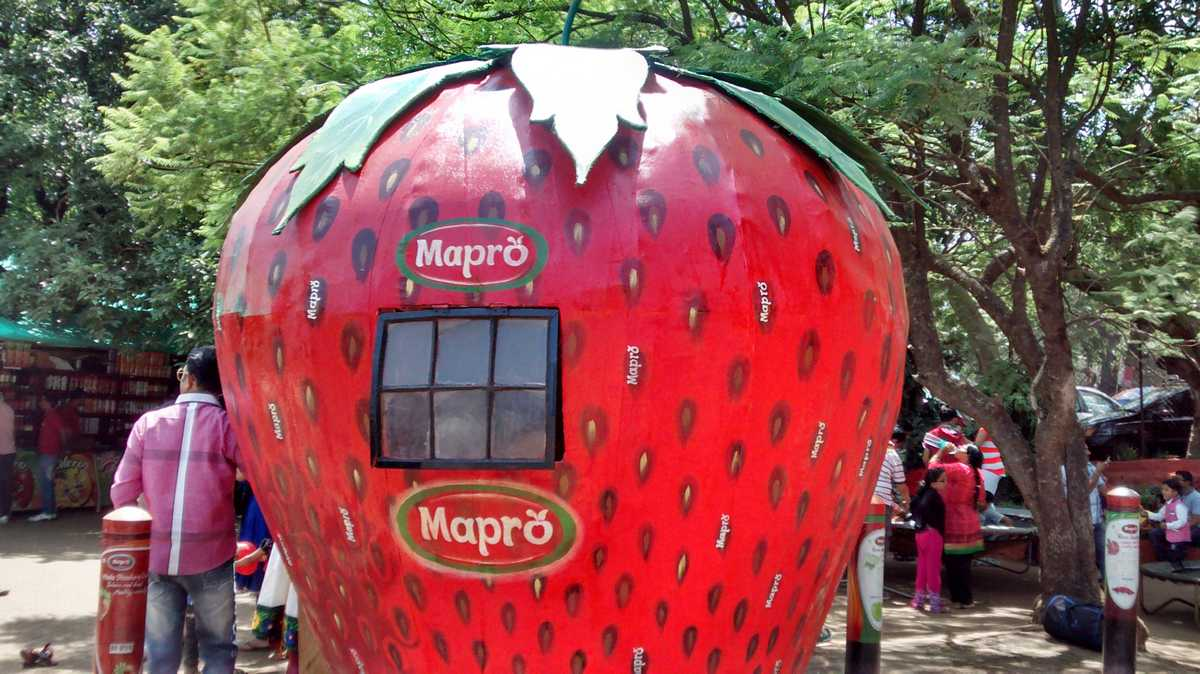 Mapro Garden Mahabaleshwar Photos Images And Wallpapers Hd Images Near By Images Mouthshut Com