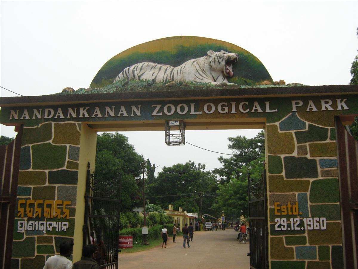 Image result for Nandankanan zoo