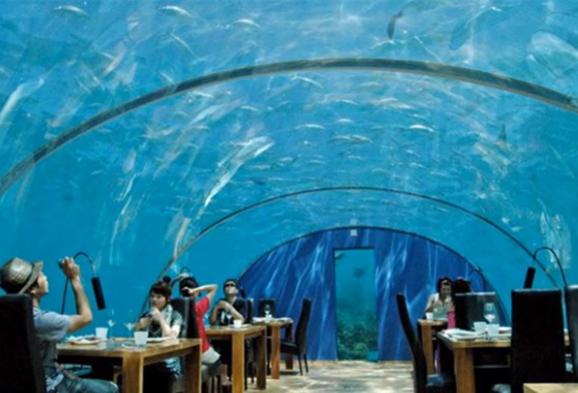 Poseidon Restaurant Menu Ahmedabad