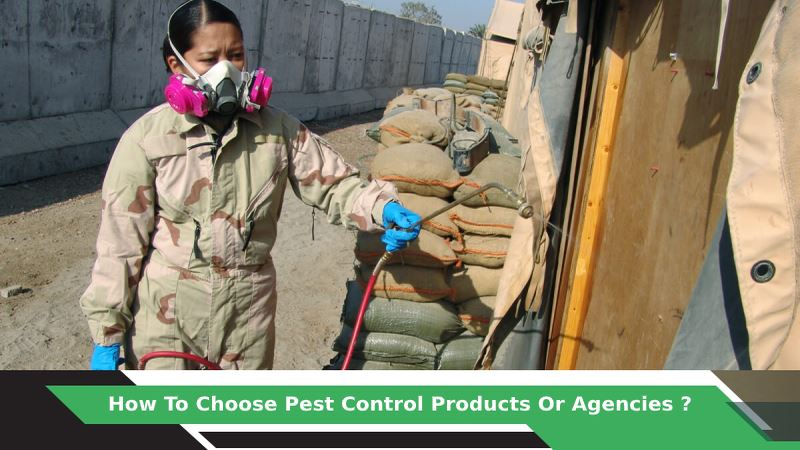 How To Choose Pest Control Products Or Agencies?