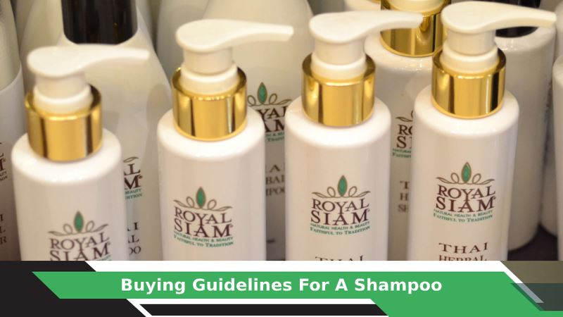How to Choose Shampoo for your Hair?