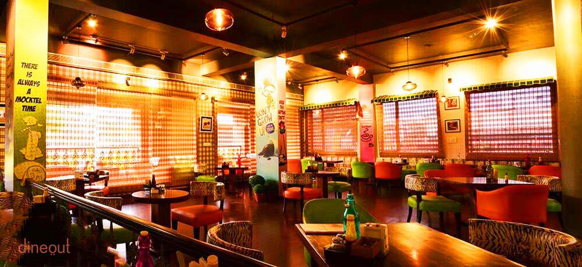 Cafe Lazy Mojo - Malviya Nagar - Jaipur Photo1