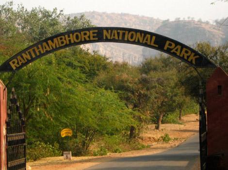 Ranthambore National Park - Sawai Madhopur Image