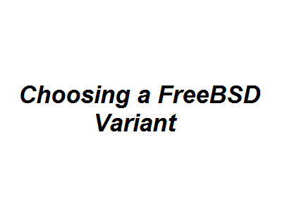Choosing a FreeBSD Variant Image