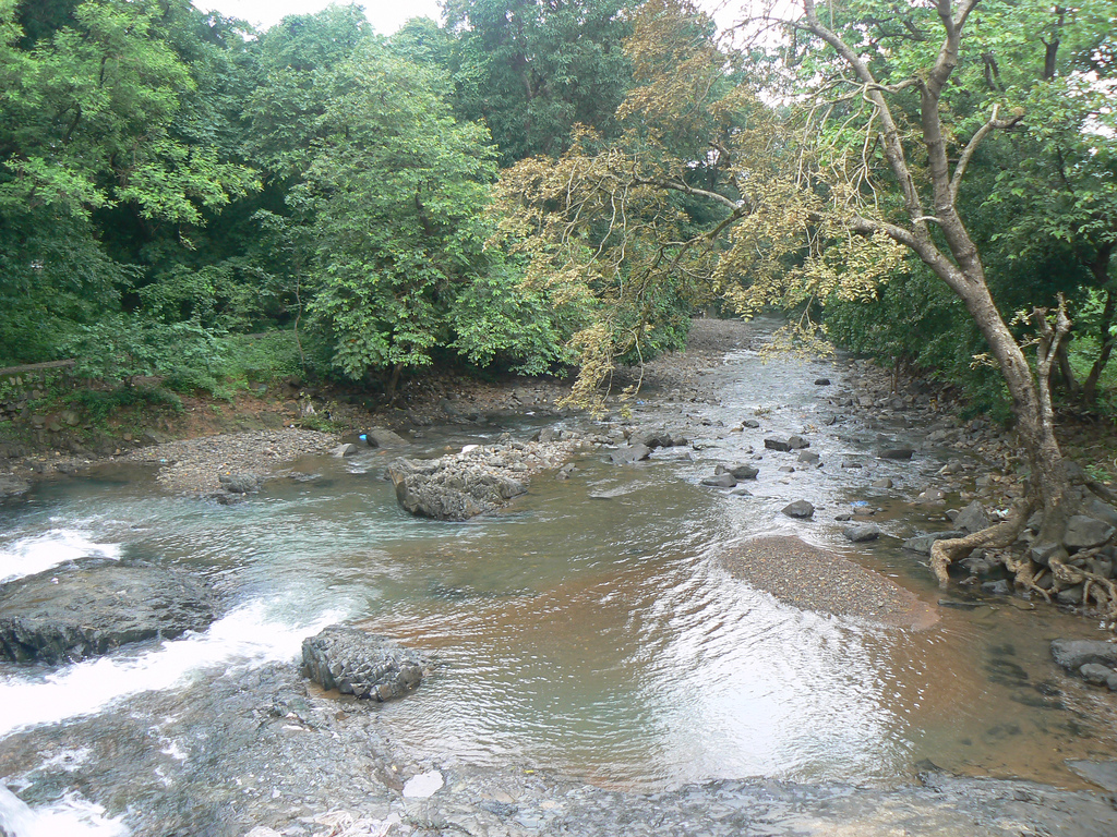 Tungareshwar Wildlife Sanctuary Image