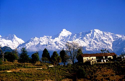 Chaukori Image