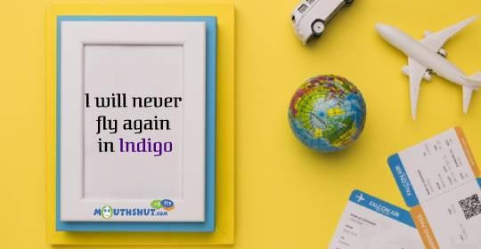 Indigo Airlines Image