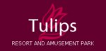 Tulip Resorts - Bangalore Image