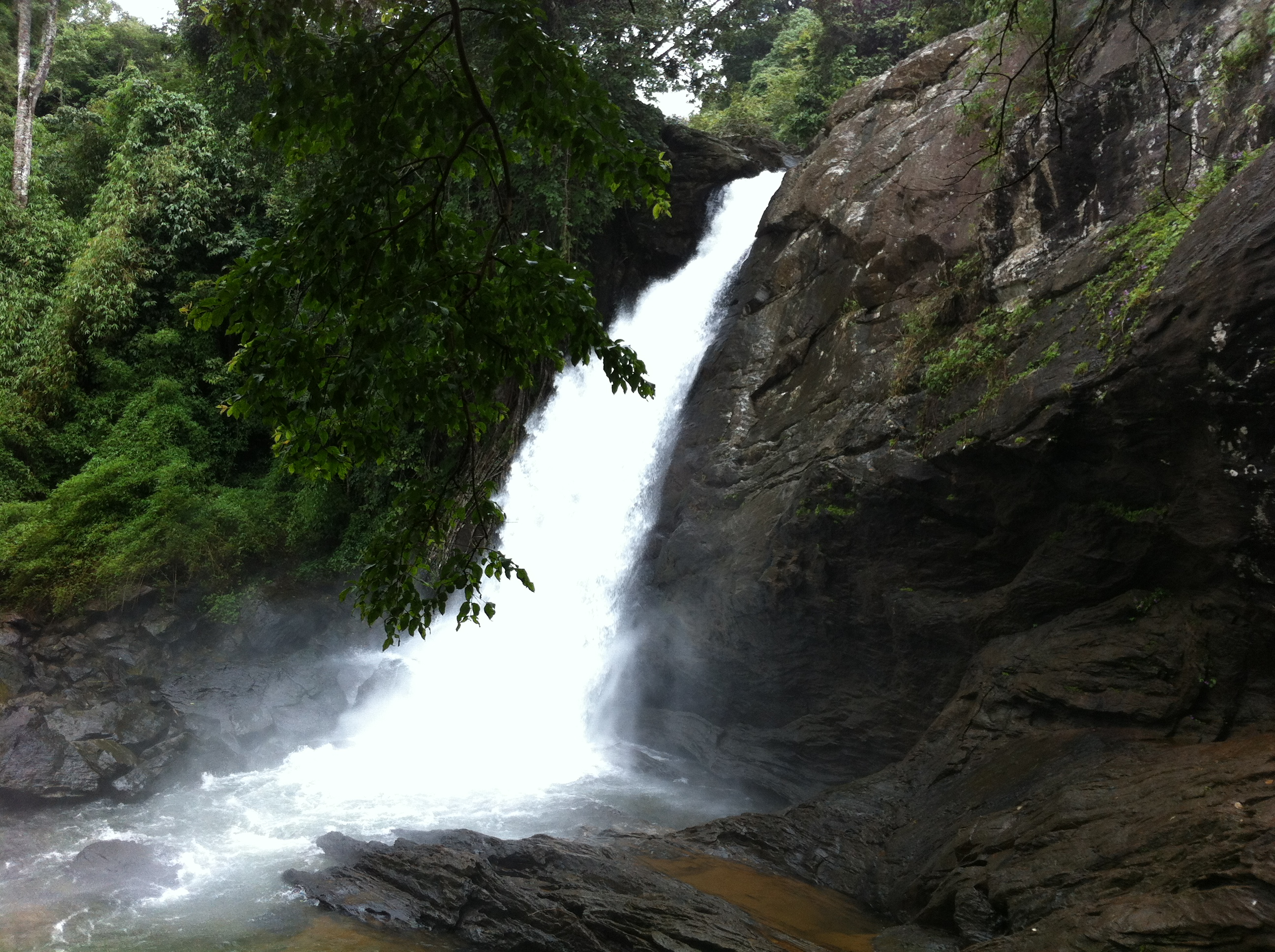Soochippara falls sentinel rock waterfall wayanad for Rock waterfall