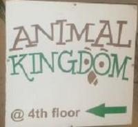 Animal Kingdom - Adyar - Chennai Image