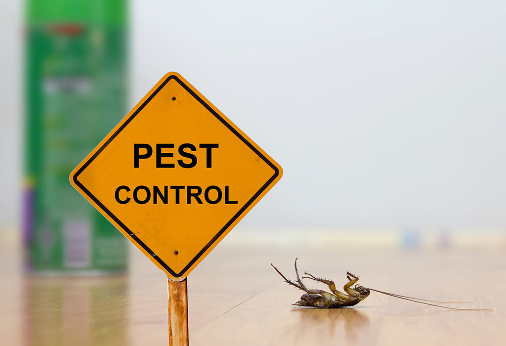 Pest Control Karnataka Image
