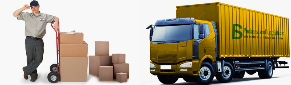Thoraipakkam Packers and Movers - Chennai Image