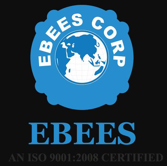 EBEES Infotrain Consultancy Services - Delhi Image