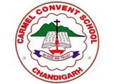 Carmel Convent School - Sector 9 B - Chandigarh Image