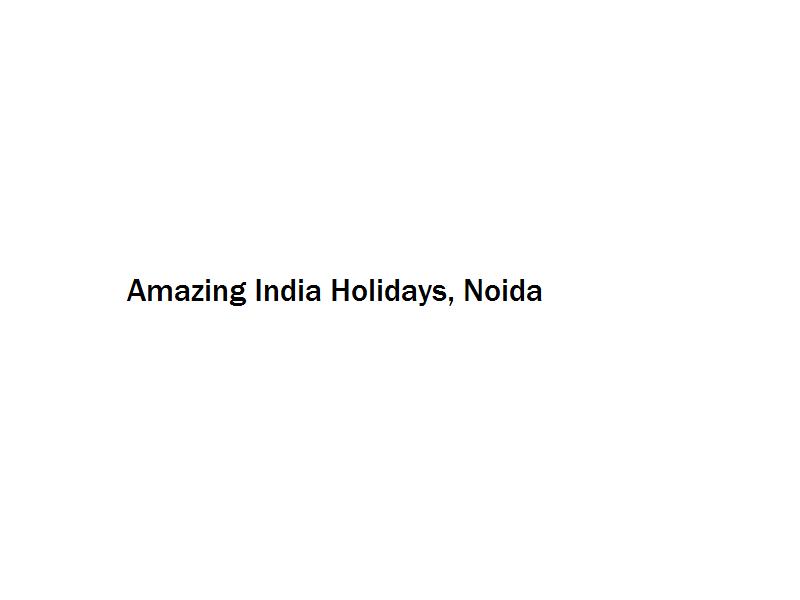 Amazing India Holidays - Noida Image