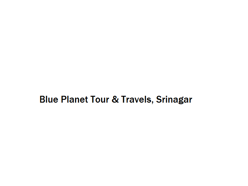 Blue Planet Tour & Travels - Srinagar Image