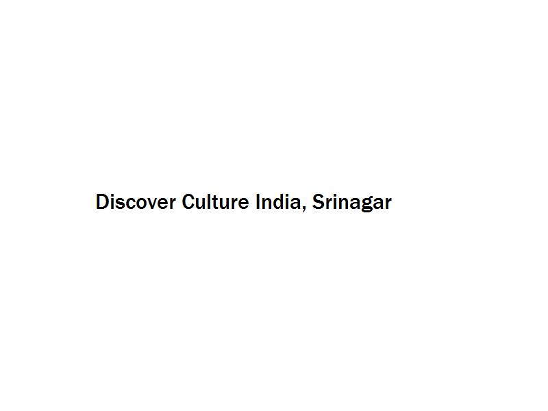 Discover Culture India - Srinagar Image