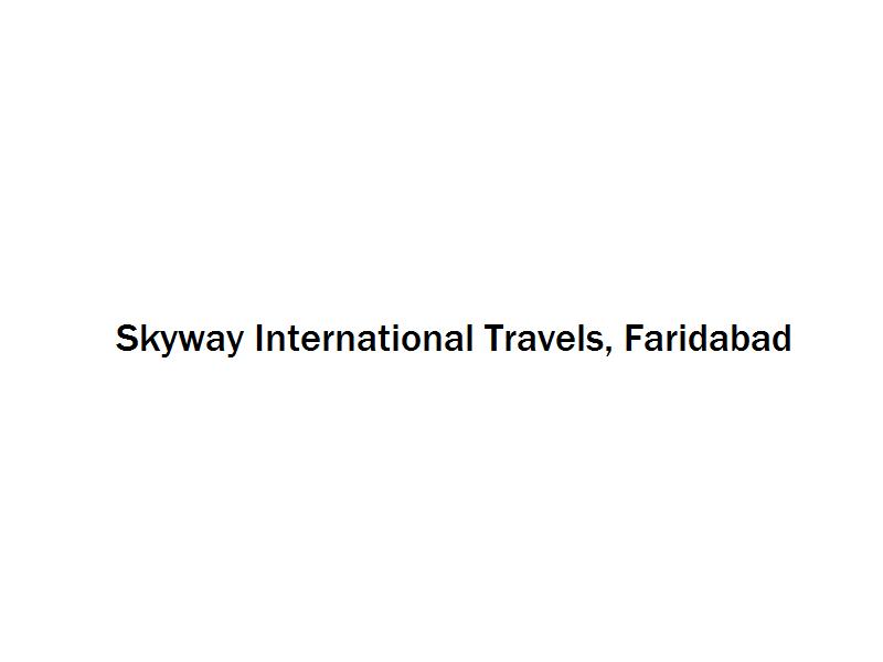 Skyway International Travels - Faridabad Image