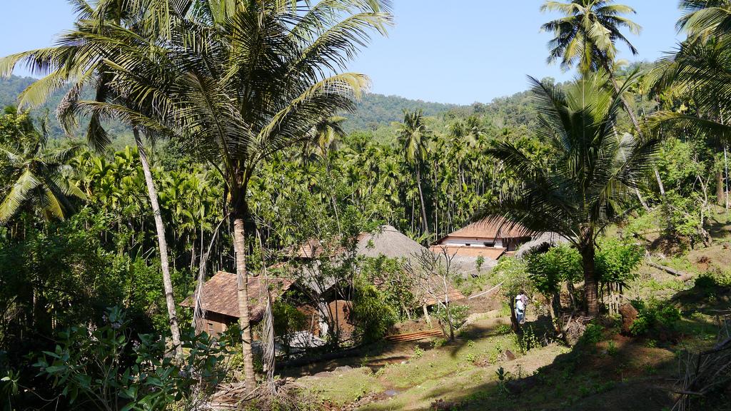 Yana Image
