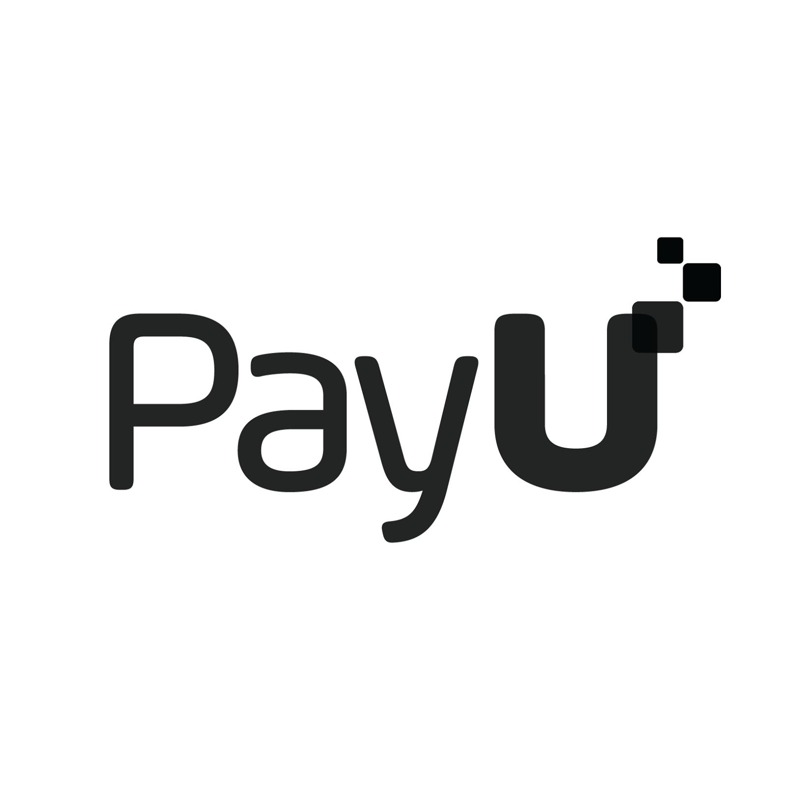 Payumoney.com Image