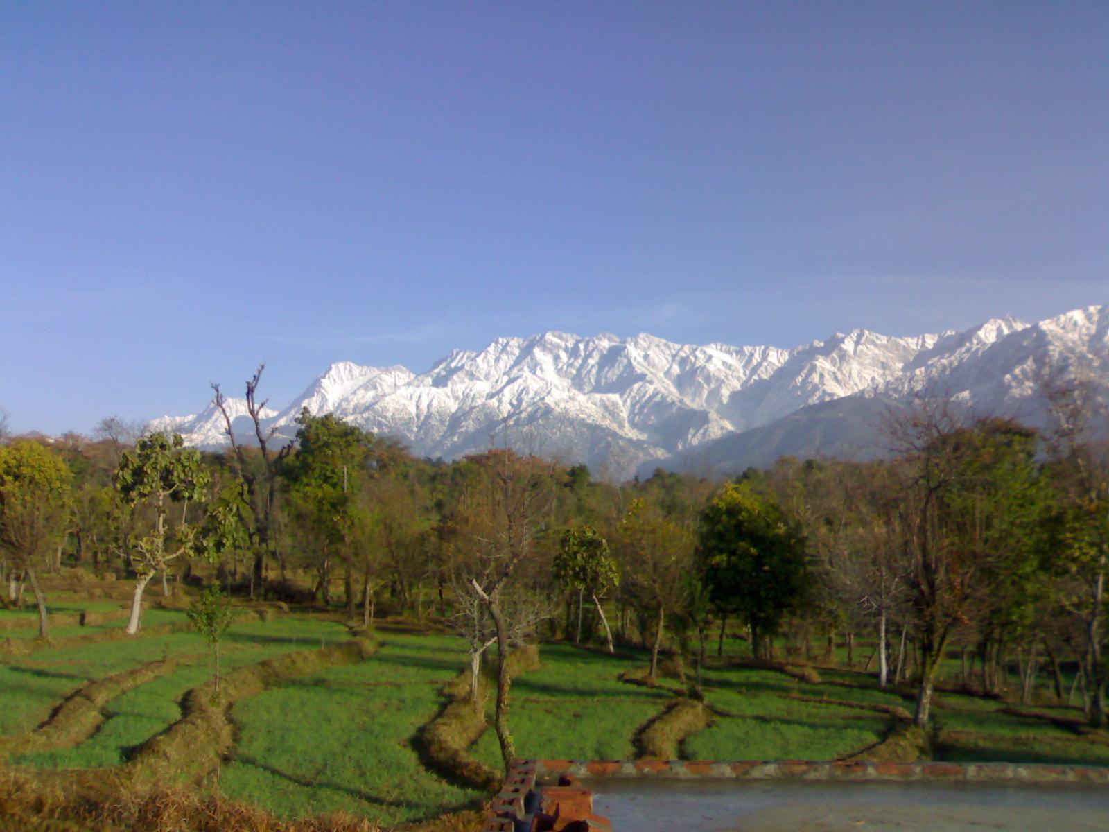 Palampur Image