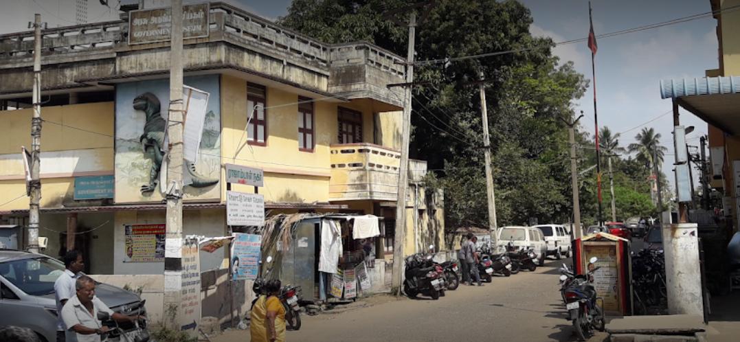 Government Museum - Cuddalore Image