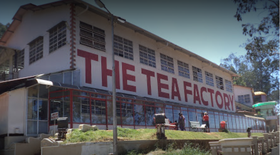 Tea Museum and Factory - Ooty Image