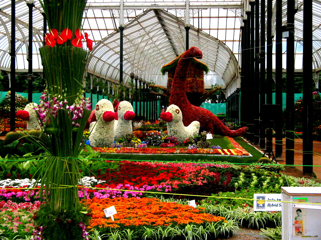 Lal Bagh Garden   Bengaluru Image