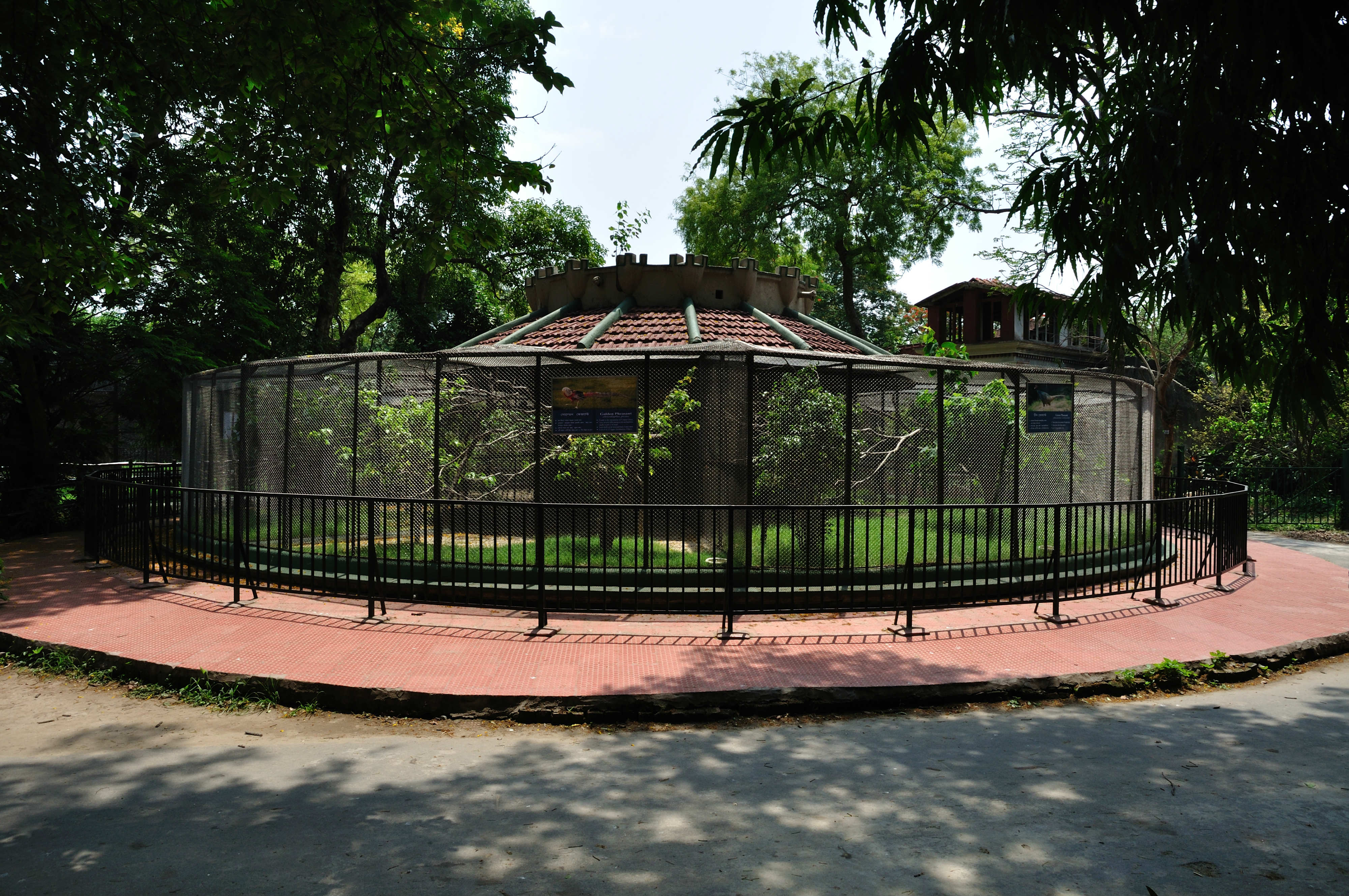 essay on a visit to alipore zoo