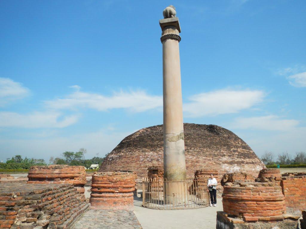 Ashokan Pillar - Vaishali Image