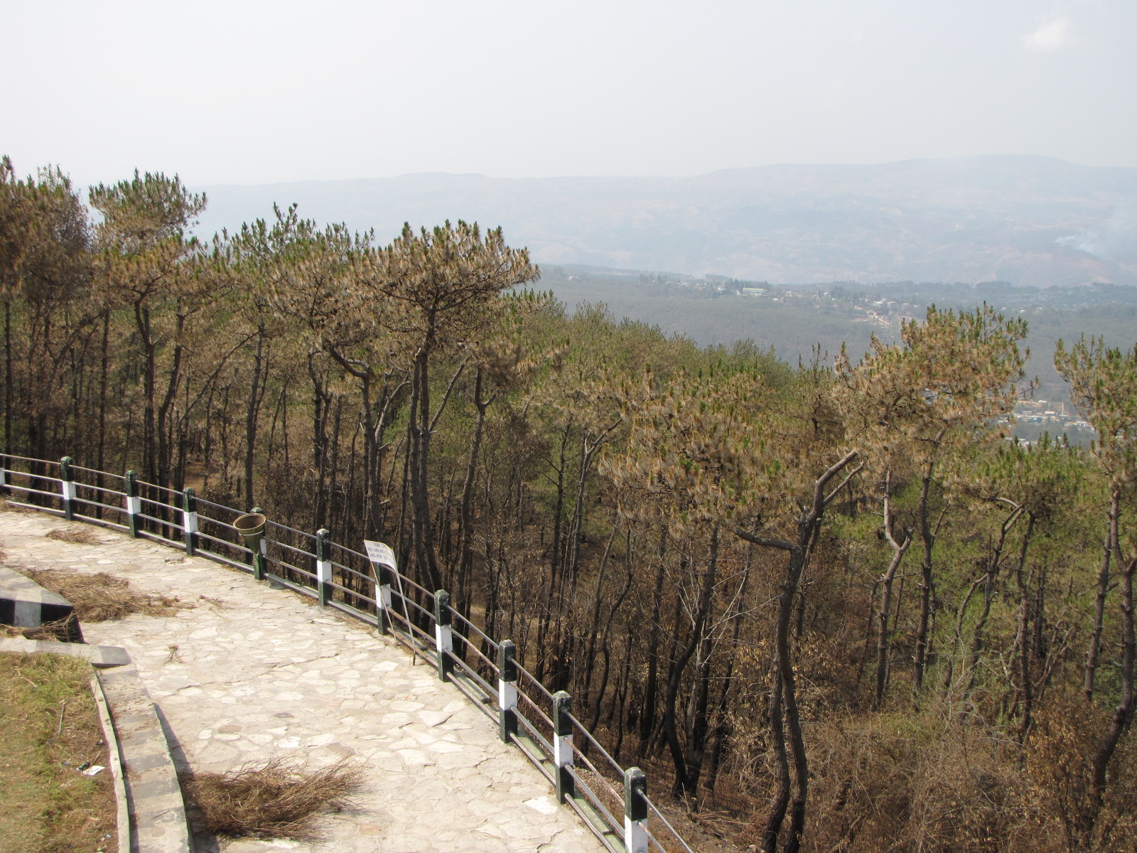 dating place in shillong