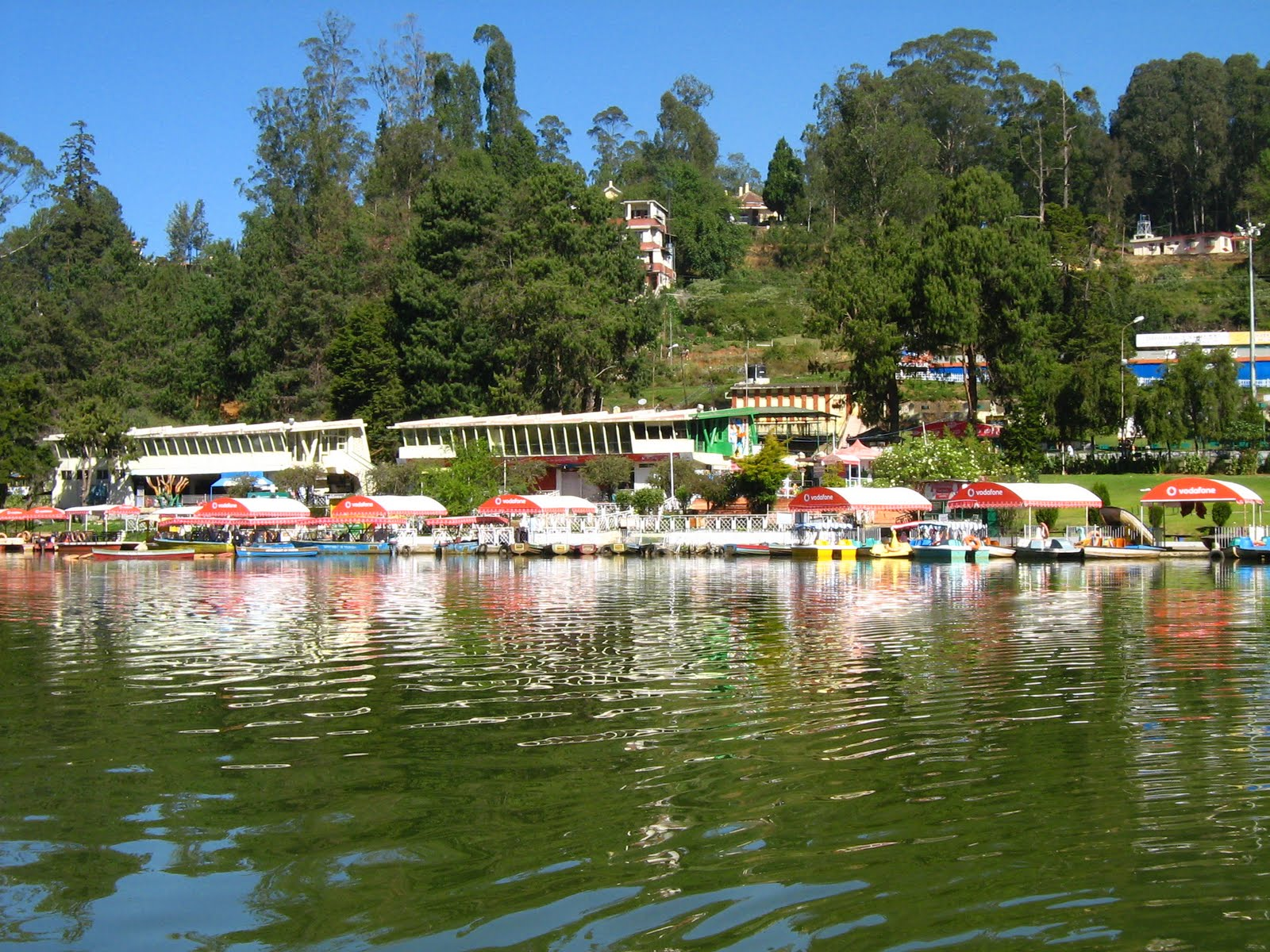 Ooty Lake - Ooty Image