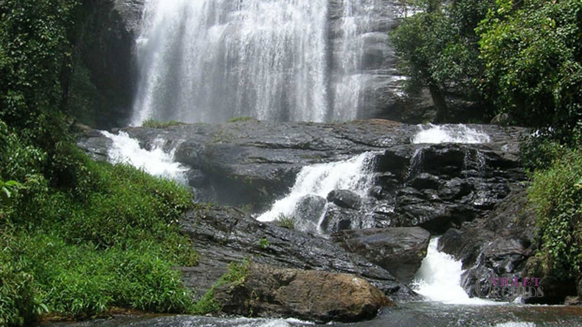 Chelavara falls coorg photos images and wallpapers for 3d wallpaper for home in bangalore
