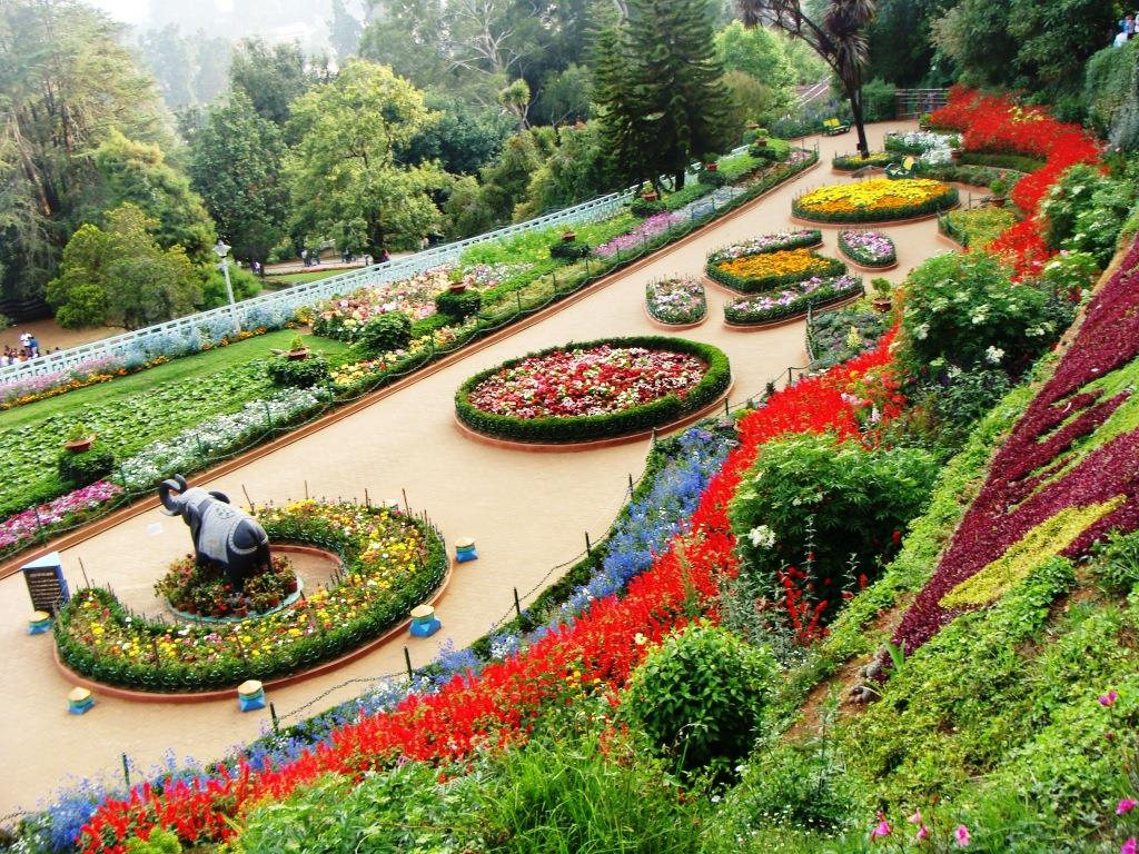 rose garden - chandigarh photos, images and wallpapers, hd images