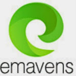 eMaven Solutions Image
