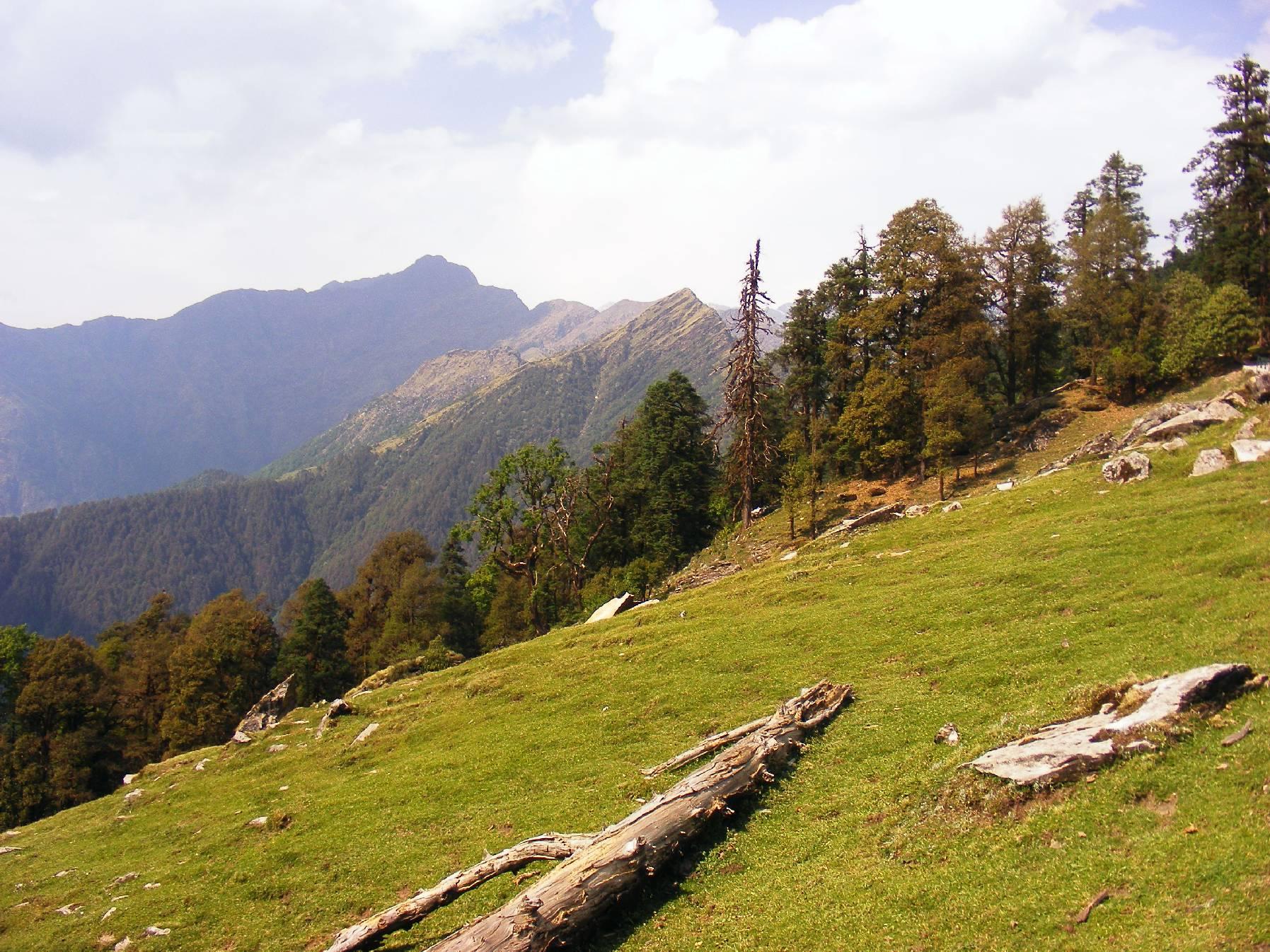 Chopta Image