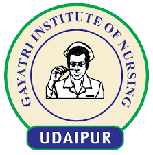 Gayatri Institute of Nursing - Udaipur Image