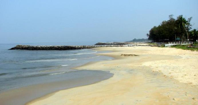 Kozhikode Beach - Kozhikode Image