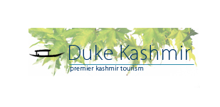 Duke Kashmir Travels - Srinagar Image