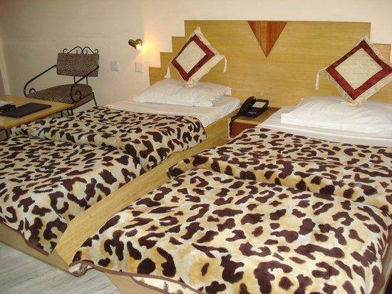 Shimla Palace Hotel - Shamla Hills - Bhopal Image