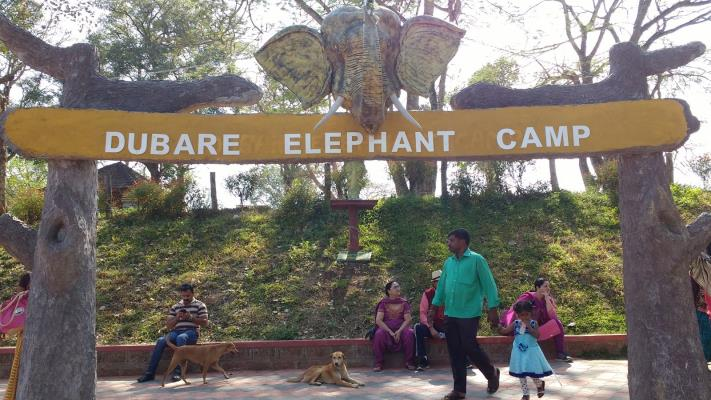 Dubare Elephant Camp - Madikeri - Coorg Image