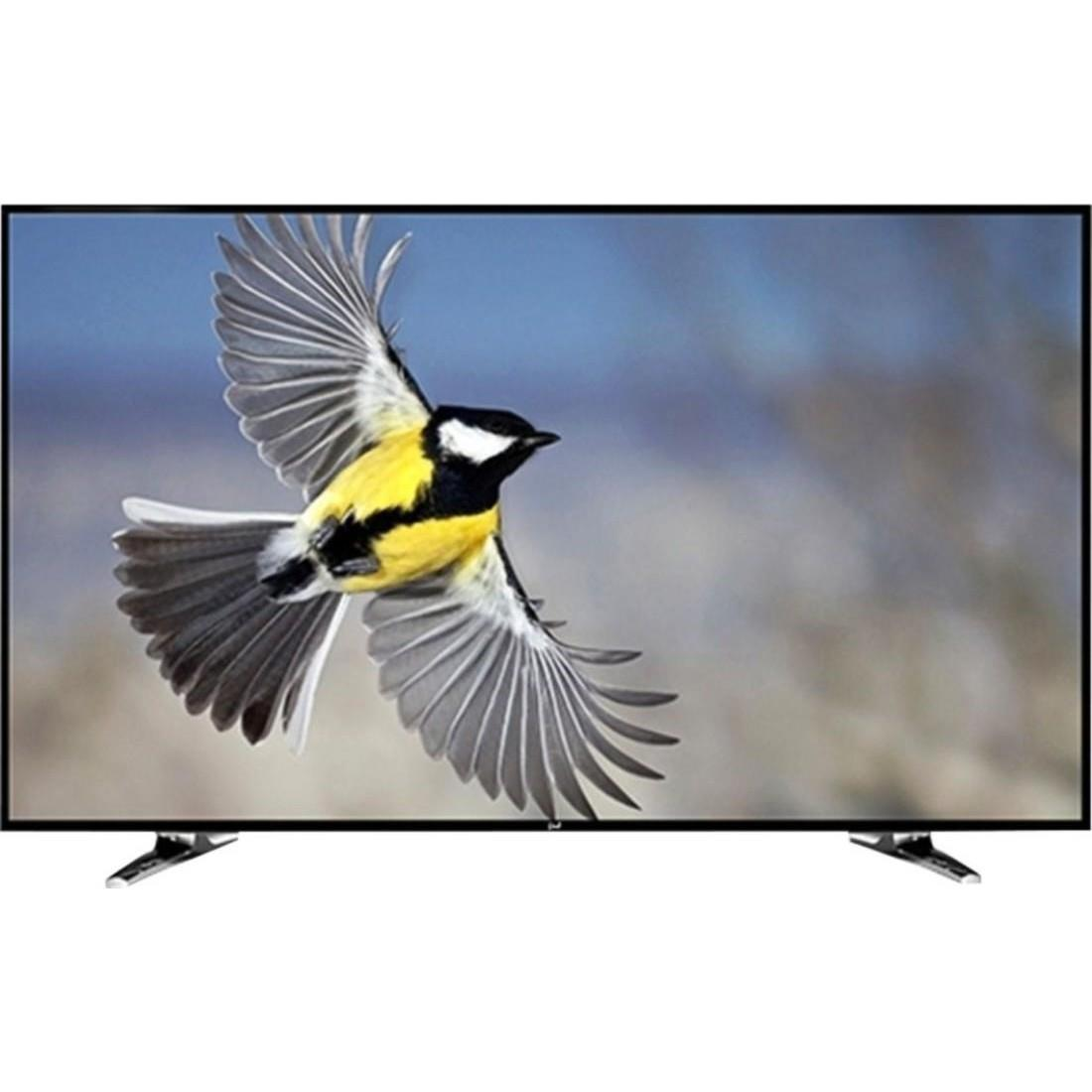 NOBLE 24CV24N01 61 cm (23.6) LED TV (HD Ready) Image