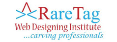 RareTag Web Designing Institute - Meerut Image