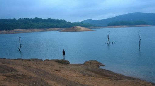 Honnemaradu Image