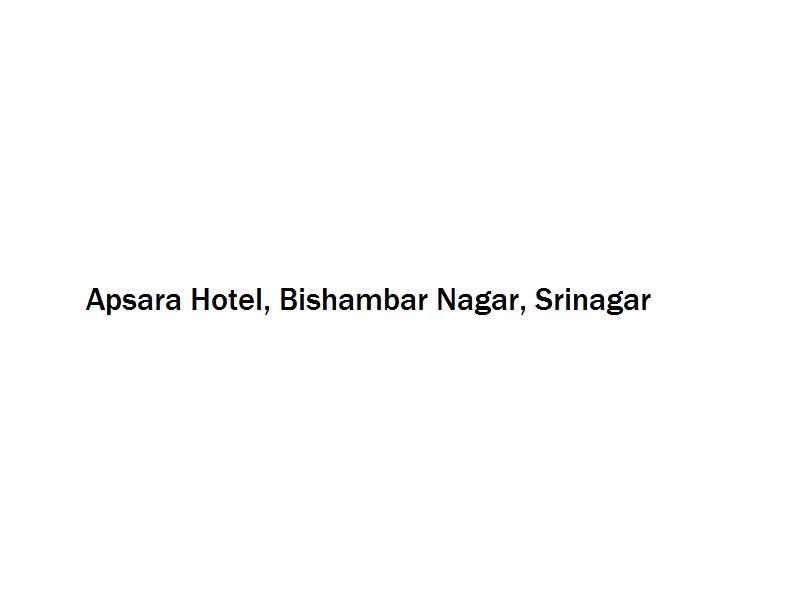 Apsara Hotel - Bishambar Nagar - Srinagar Image